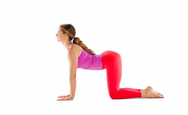 posture de la vache yoga