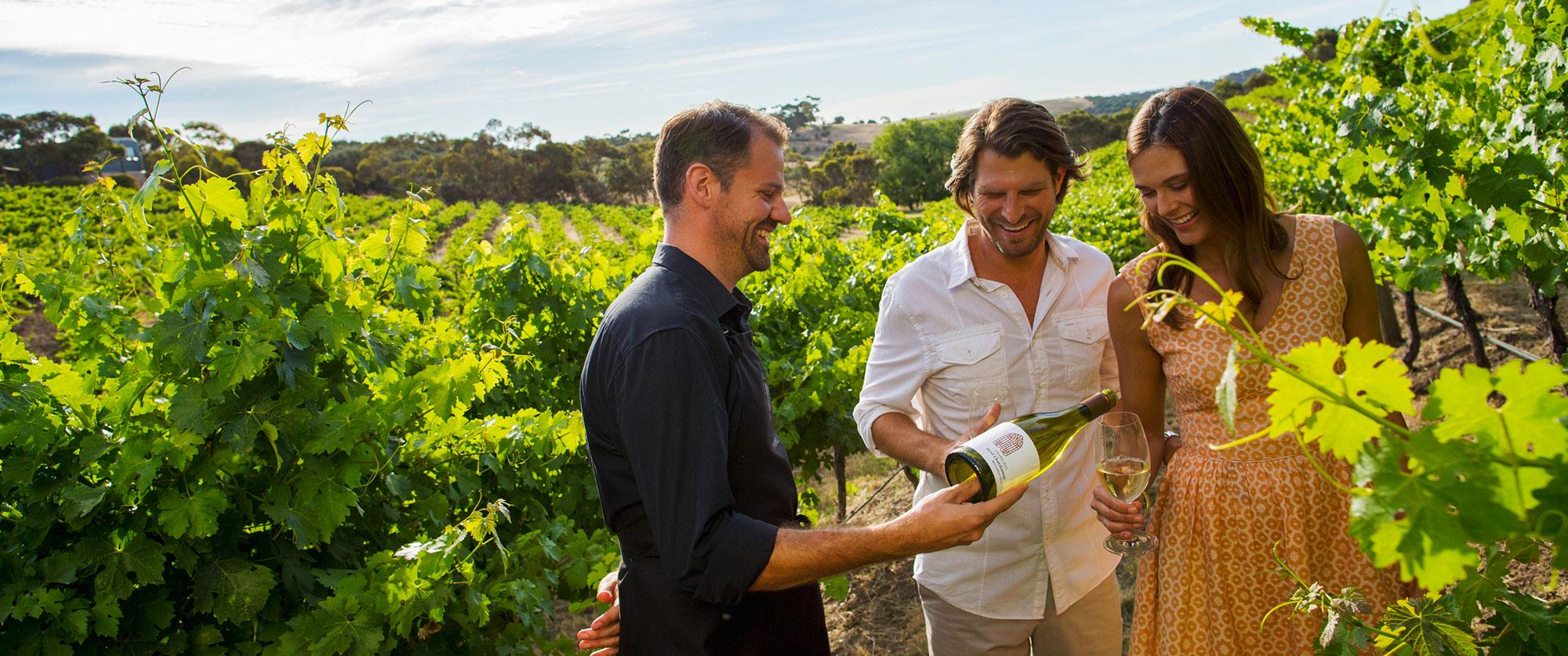 Pouring-wine-in-vineyard.jpg