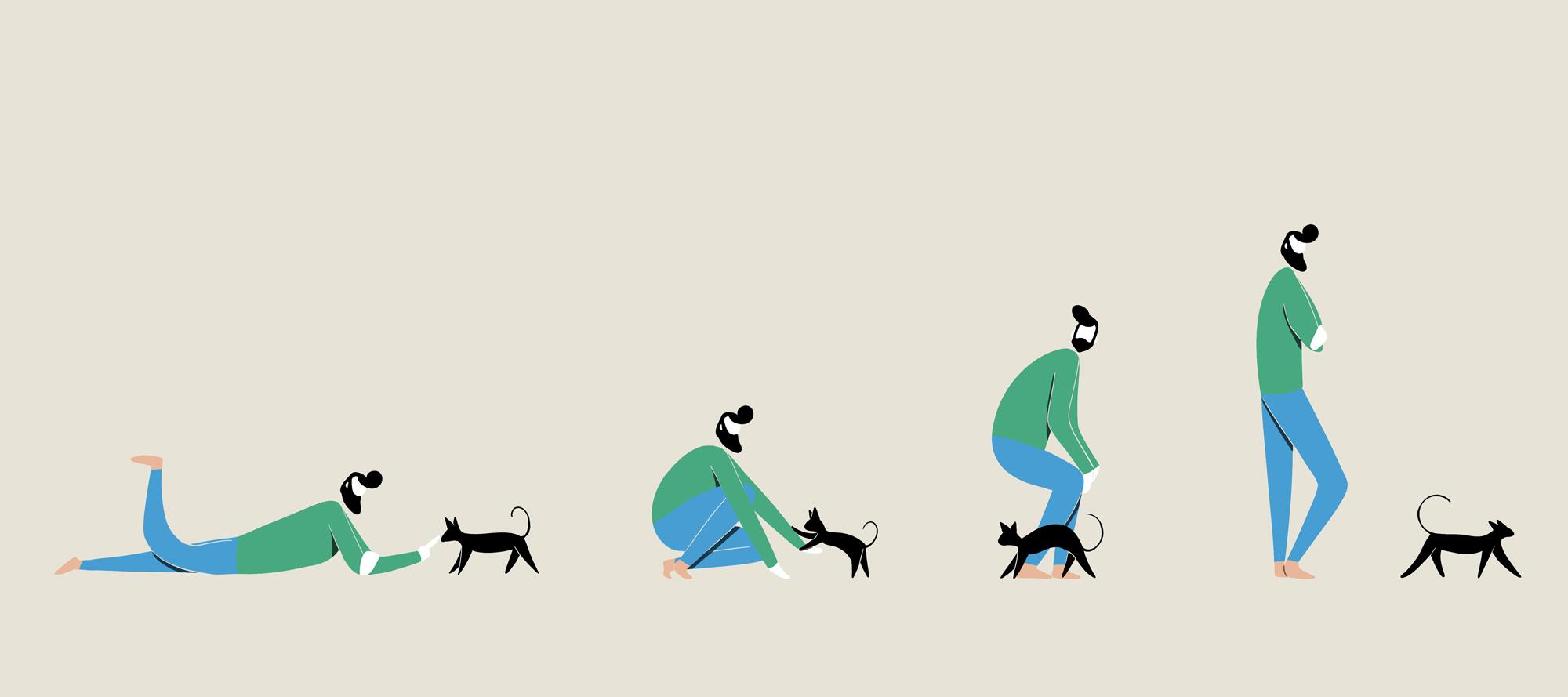 evolution-cats.jpg