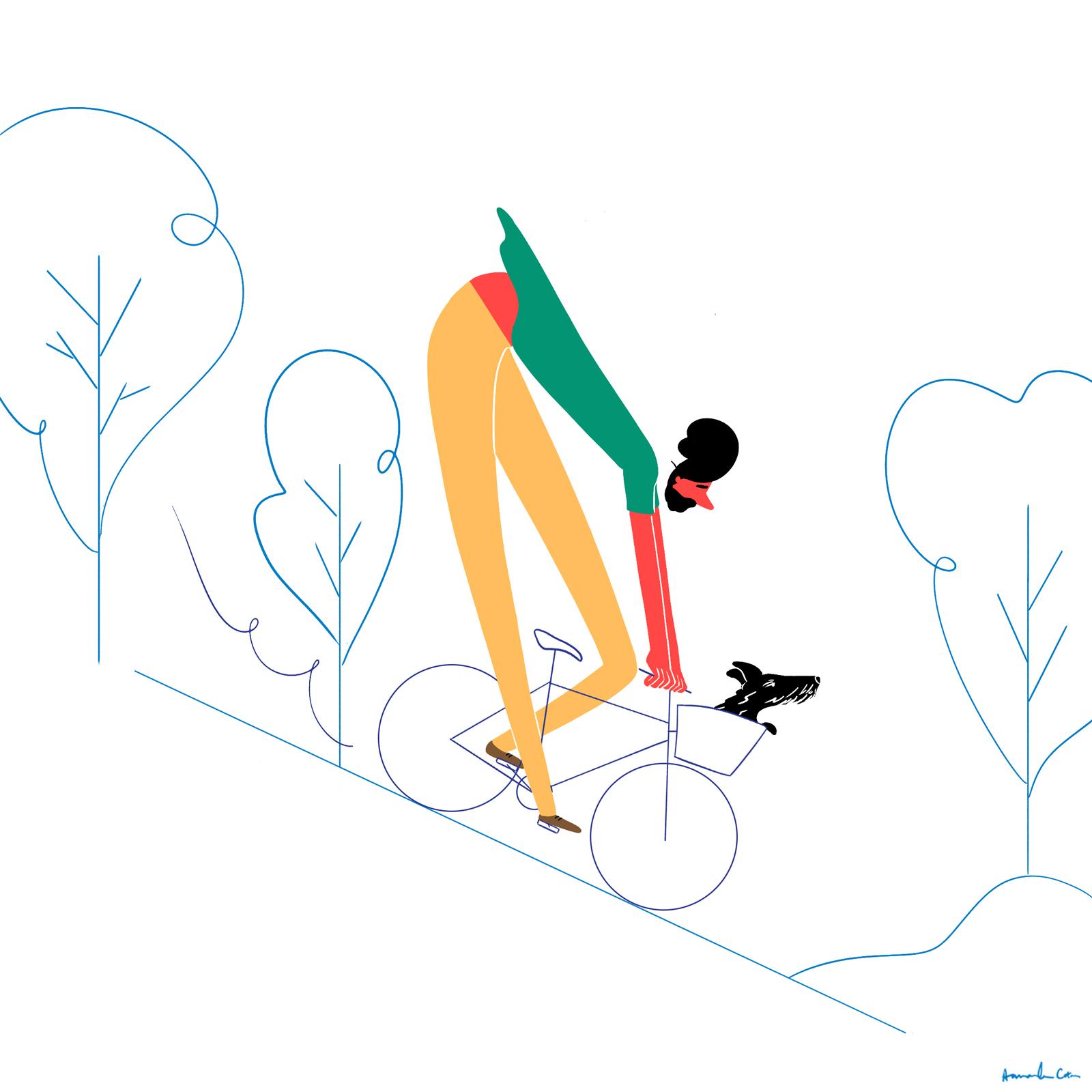 bikeanddog2.jpg