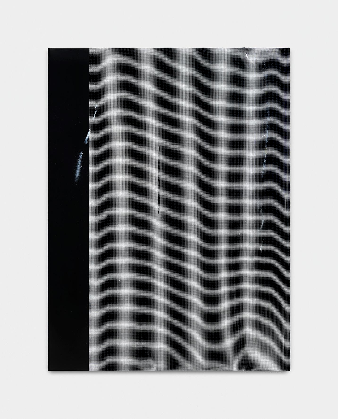 190801 | 2019 | Acryl, Lack, Armierungsfolie auf Leinwand | 160 x 120 cm | ©GALERIE ALBER