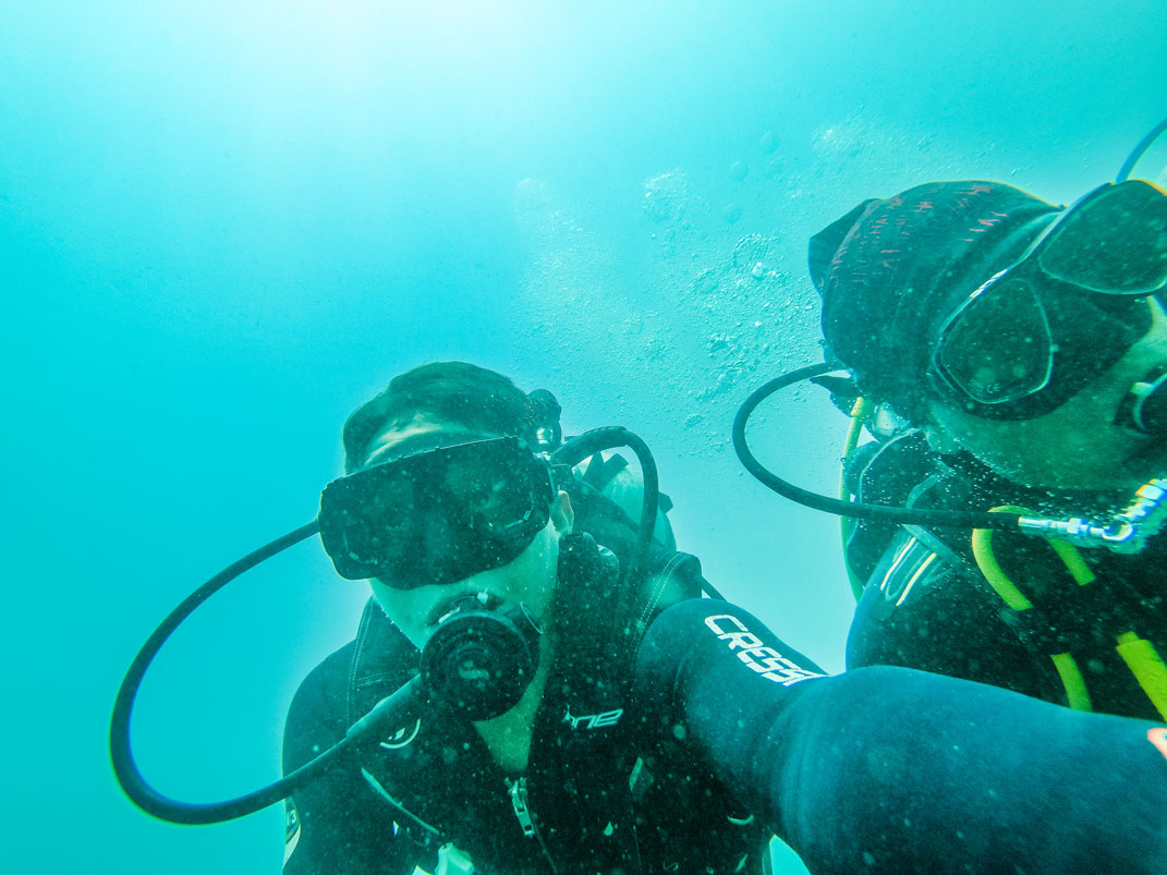 Fun Dives -
