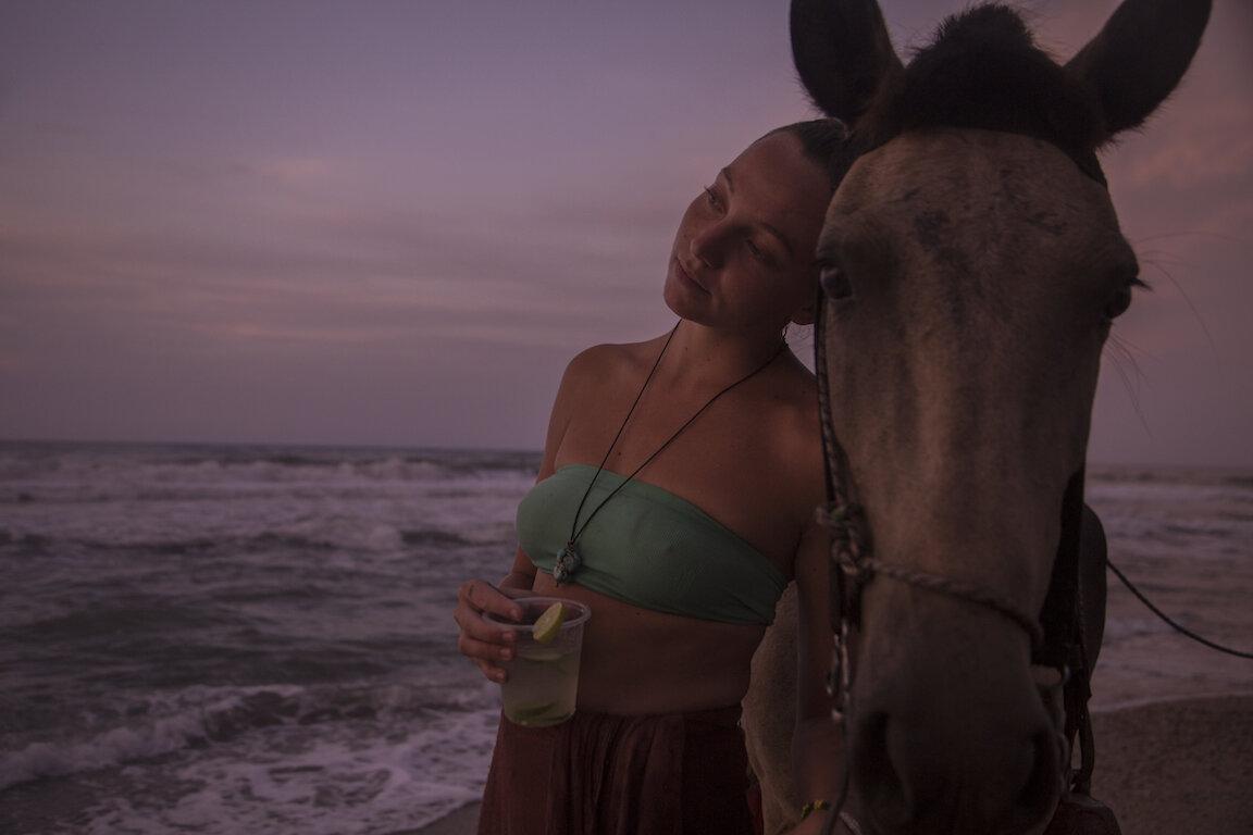Horseback Riding Palomino Beach