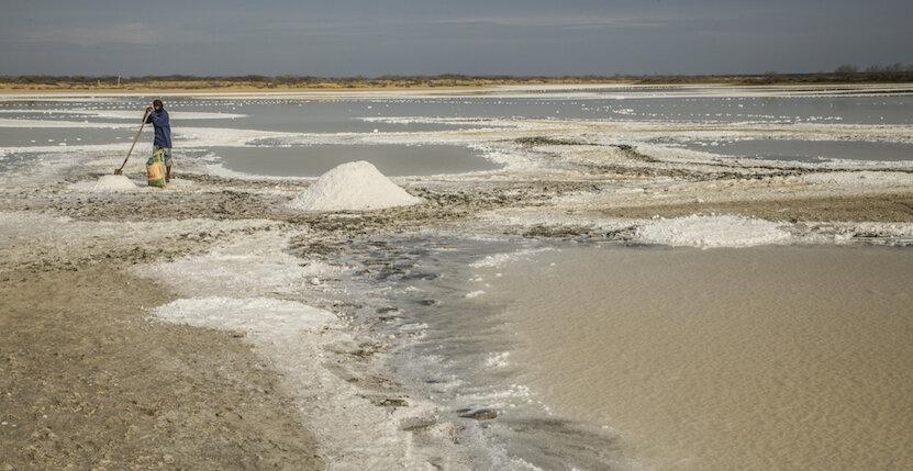 Salt Manaure