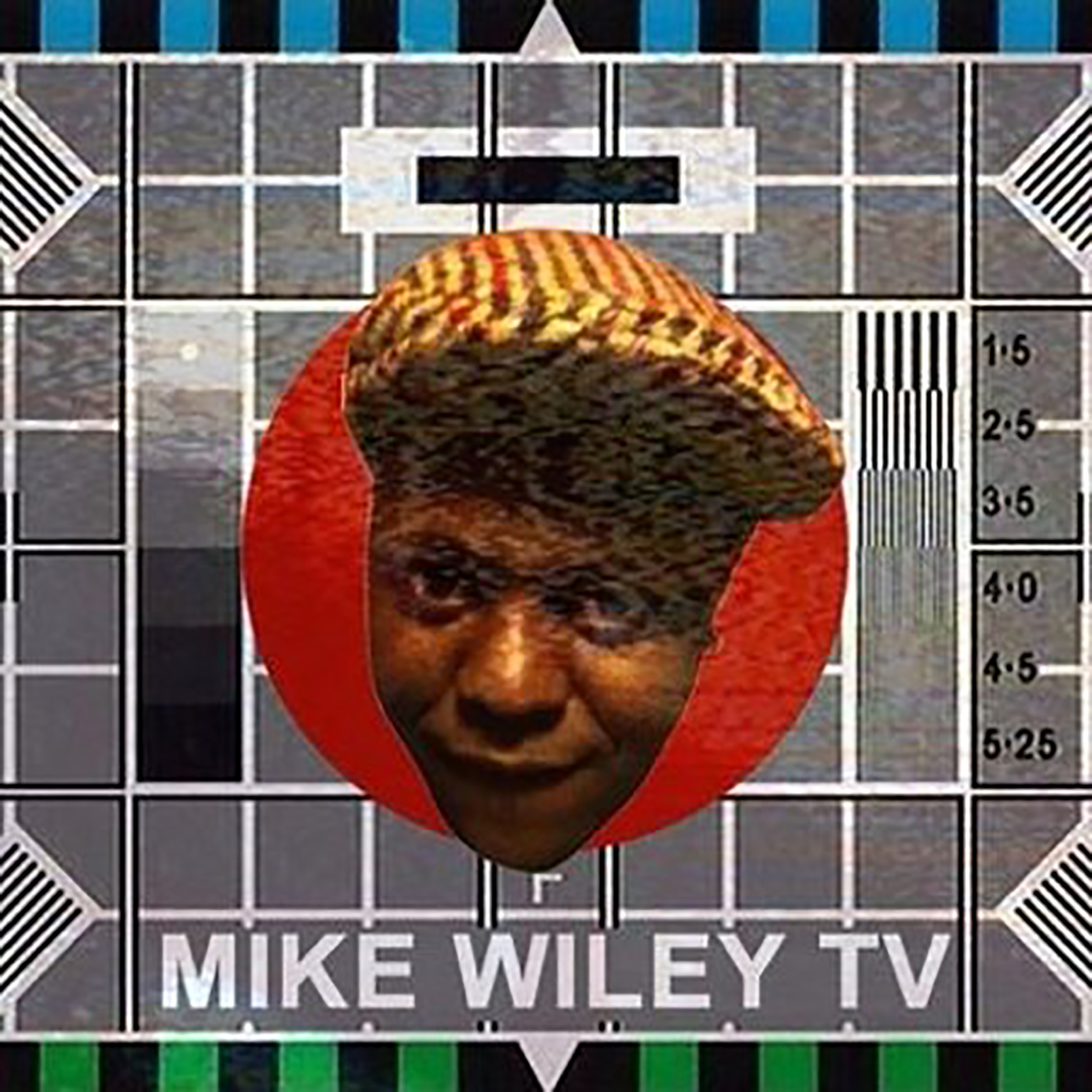 MikeWileyTVLogo.jpg