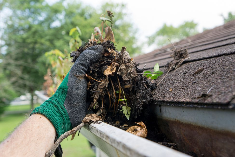 Gutter Cleaning - Whether its on the inside or the outside of the gutter, we'll make sure its taken care of. Your foundation will thank you.
