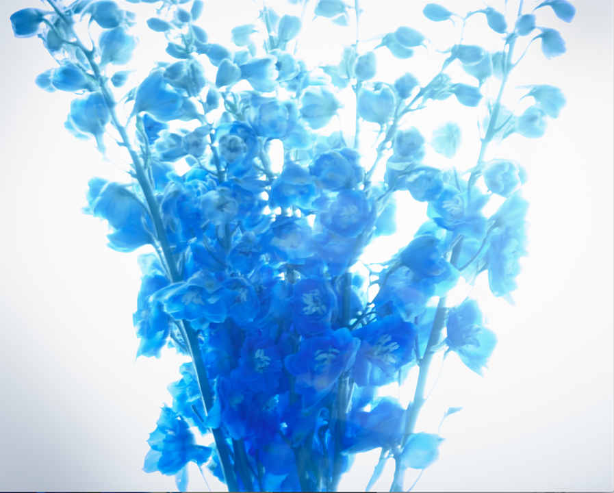 Blue series # 3.png
