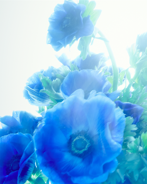 Blue series #1.png