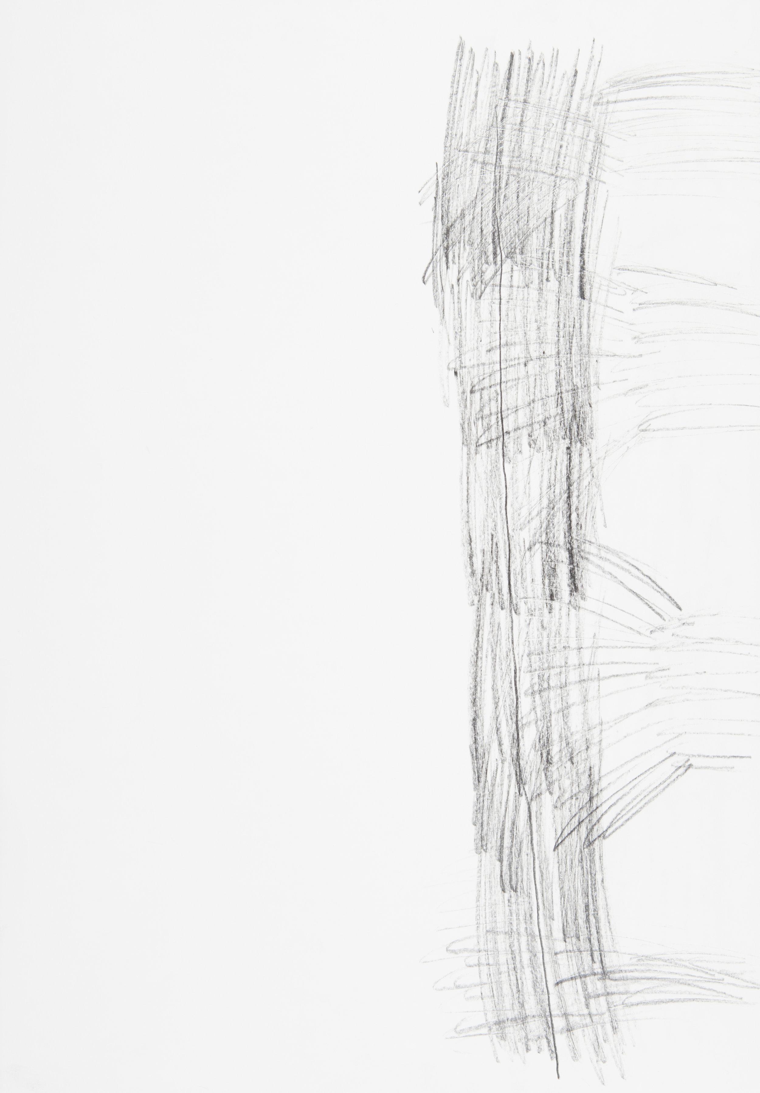 s.d. 4  pencil on paper,  50 x 35 cm