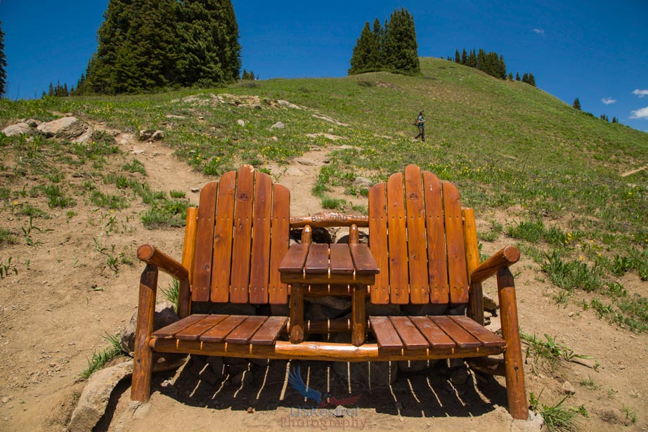 Bill's Bench - Front view