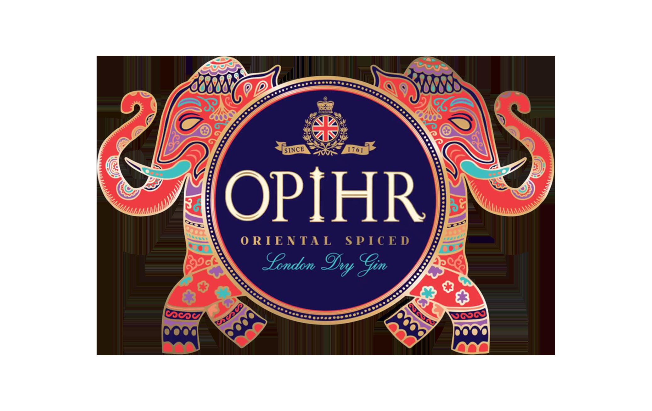 Website Logos_v03 Opihr.png