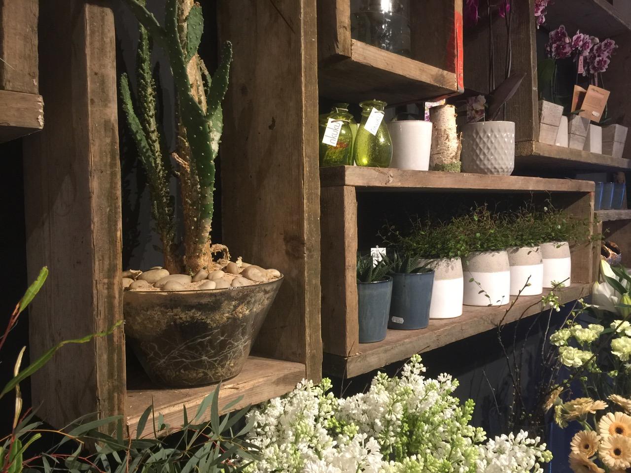 A little glimpse of the shop…