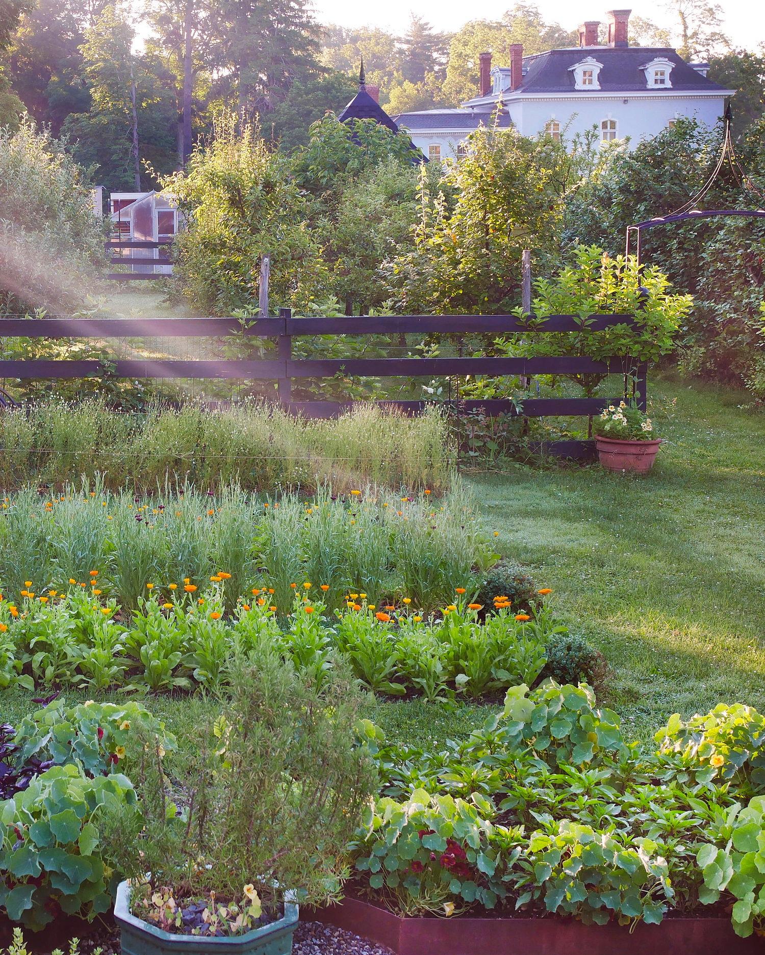 farm+view+9.jpg