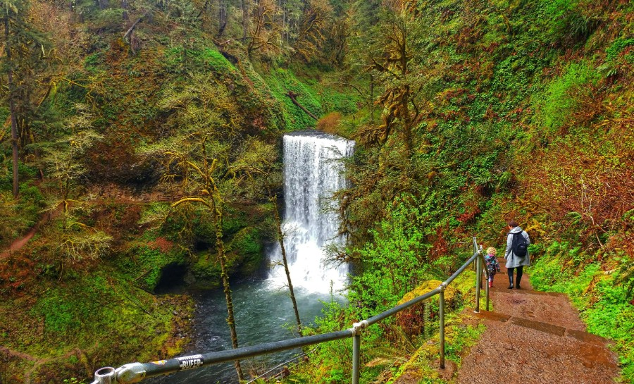 Lower south falls - Silver Falls State Park