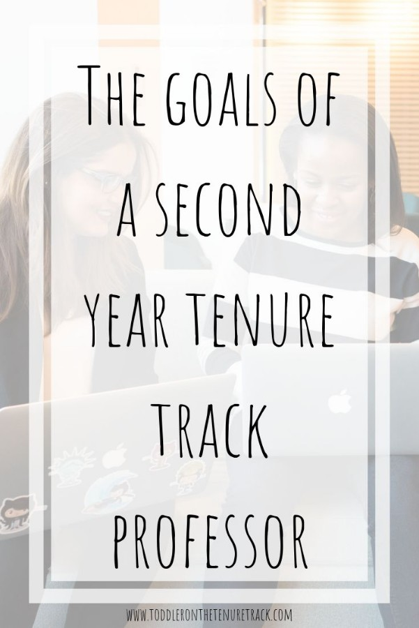 goals for the second year on the tenure track