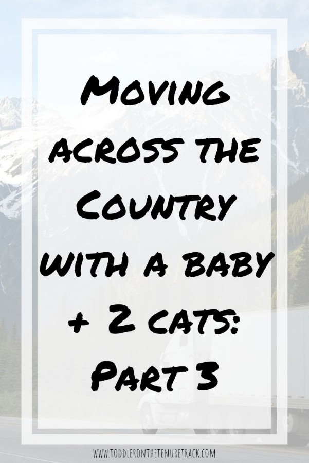 moving across the country with a baby and two cats part 3