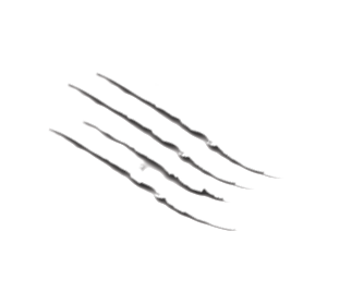 claw-markandthtiger.png