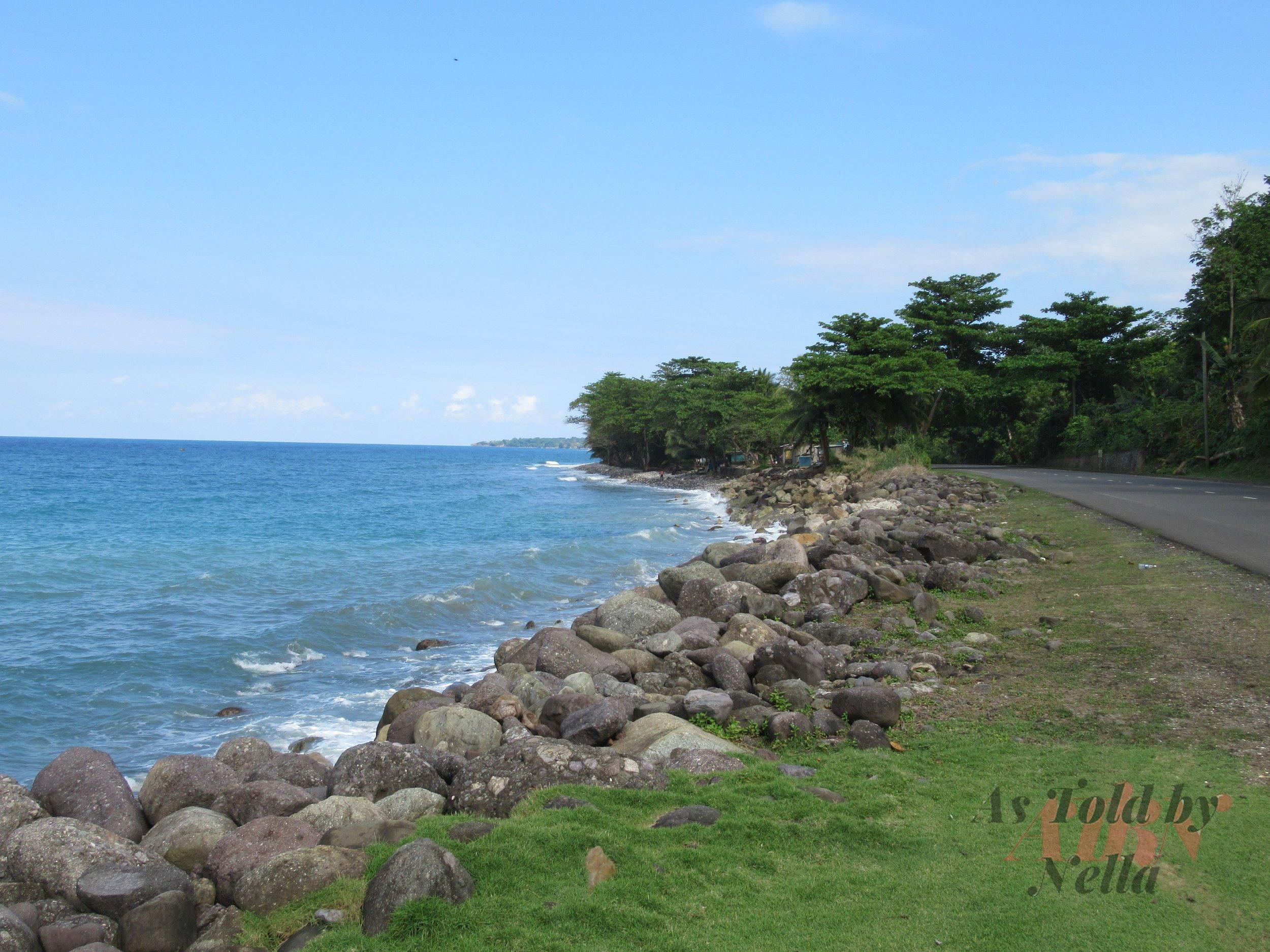 Go Natural Jamaica.jpg