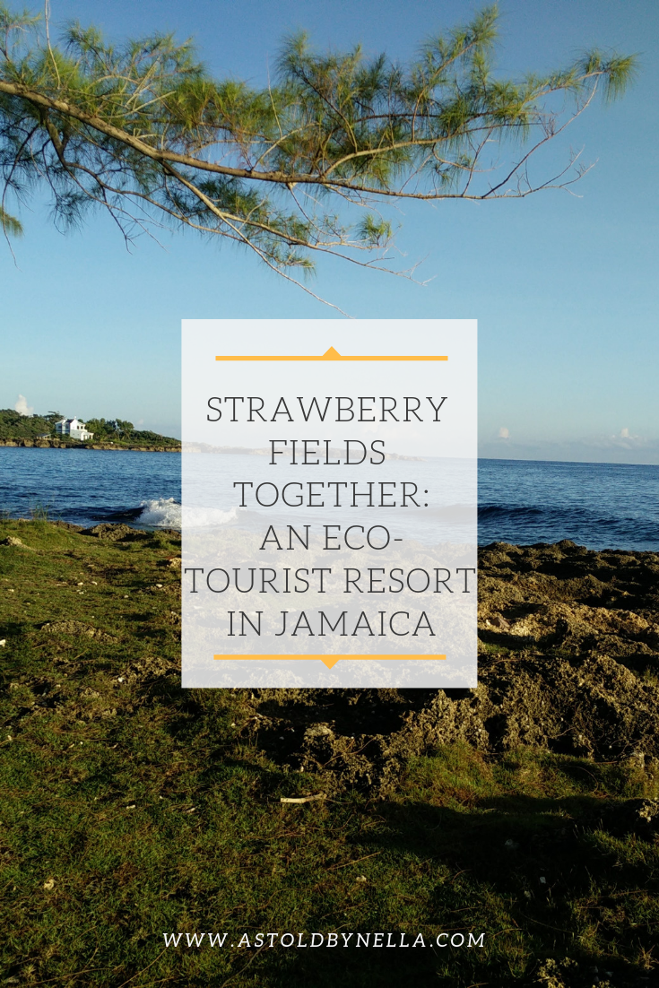 strawberry fields together_ an Eco-Tourist resort in Jamaica.png