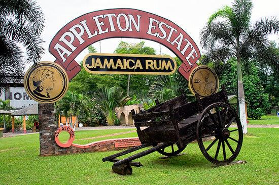 Appleton Estate Rum Tour Jamaica.jpg