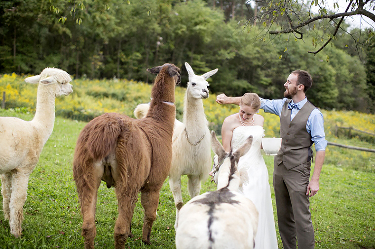 schnoodleberry-farm-wedding-kelsey-kradel-photography_001(pp_w760_h506).jpg