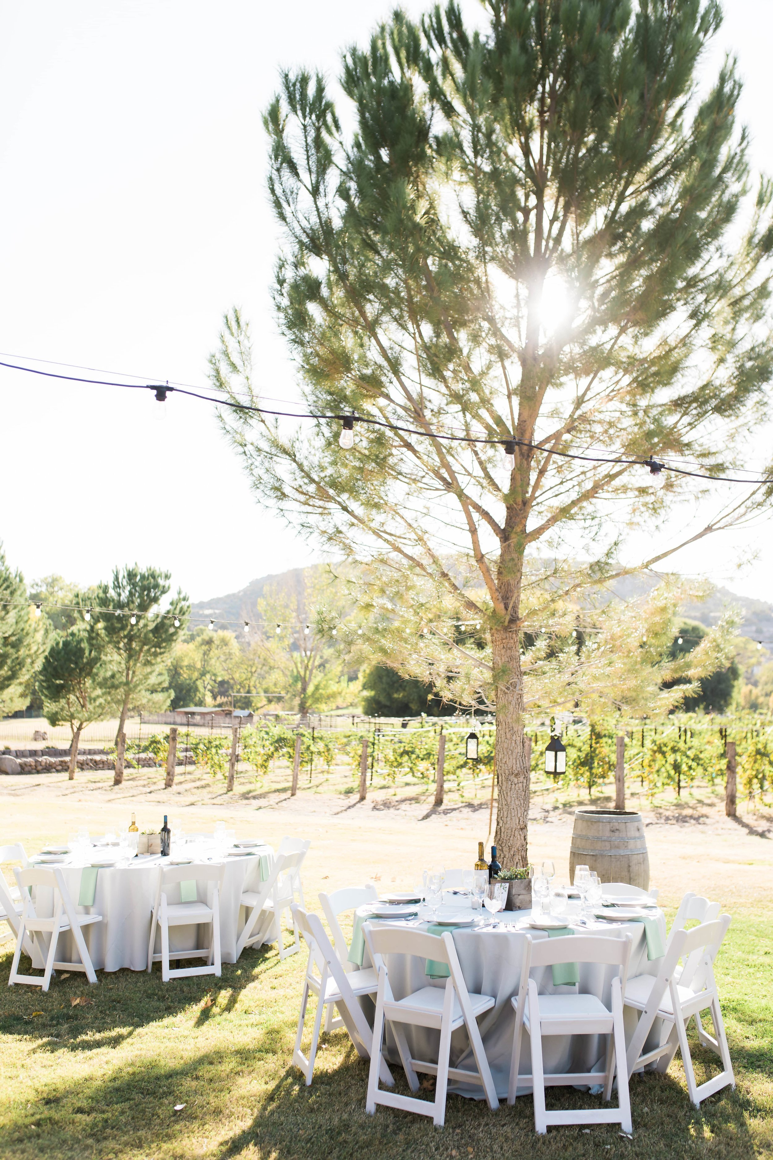 Tara Nichole Photo - Page Springs Wedding Details - Phoenix Wedding Photographer.jpg