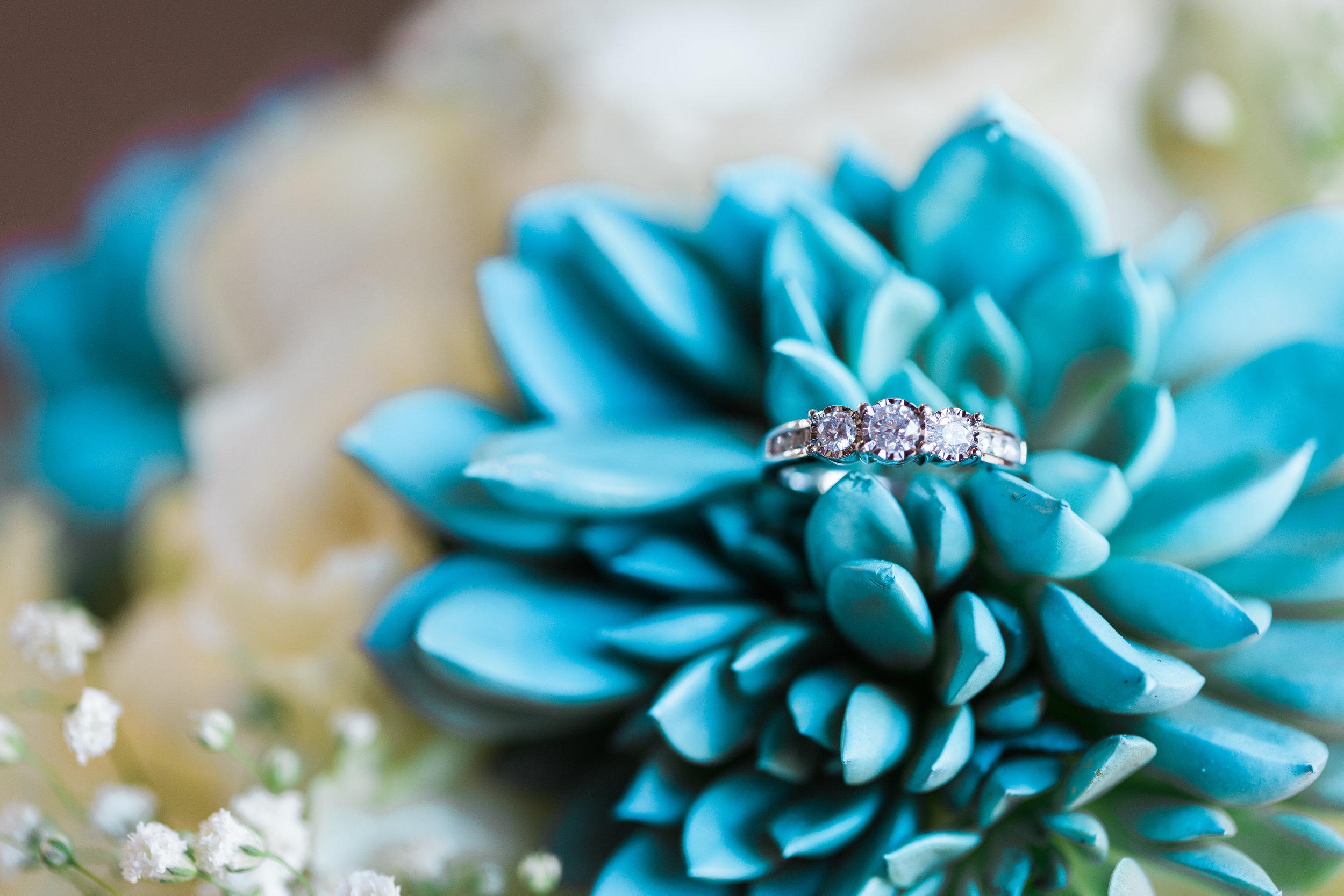 Carlos-Kayla-Wedding-Tara-Nichole-Photo-Wedgewood-Chandler-Arizona-26.jpg