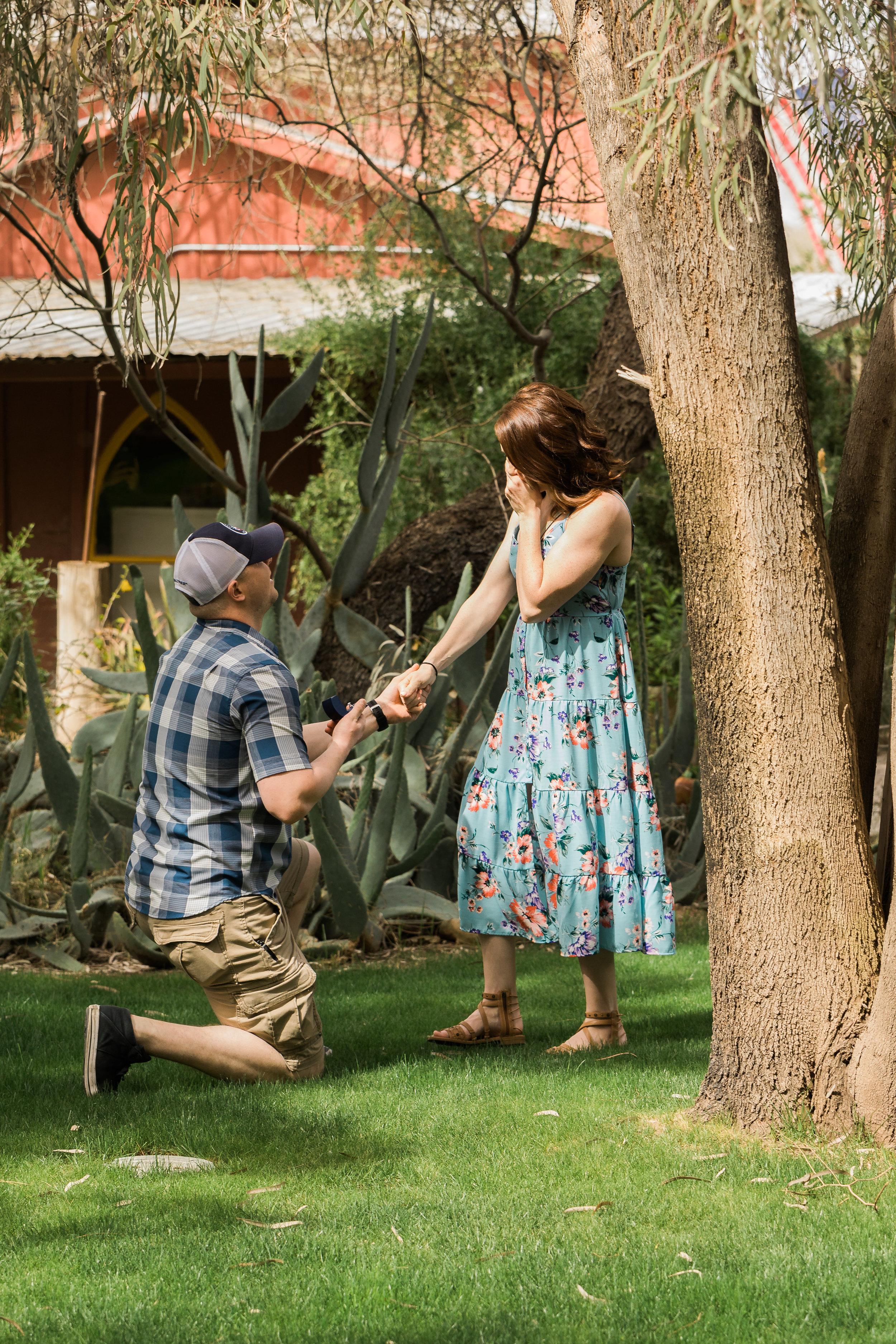 Windmill-Winery-Proposal-Tara-Nichole-Photo-Florence-Arizona-4.jpg