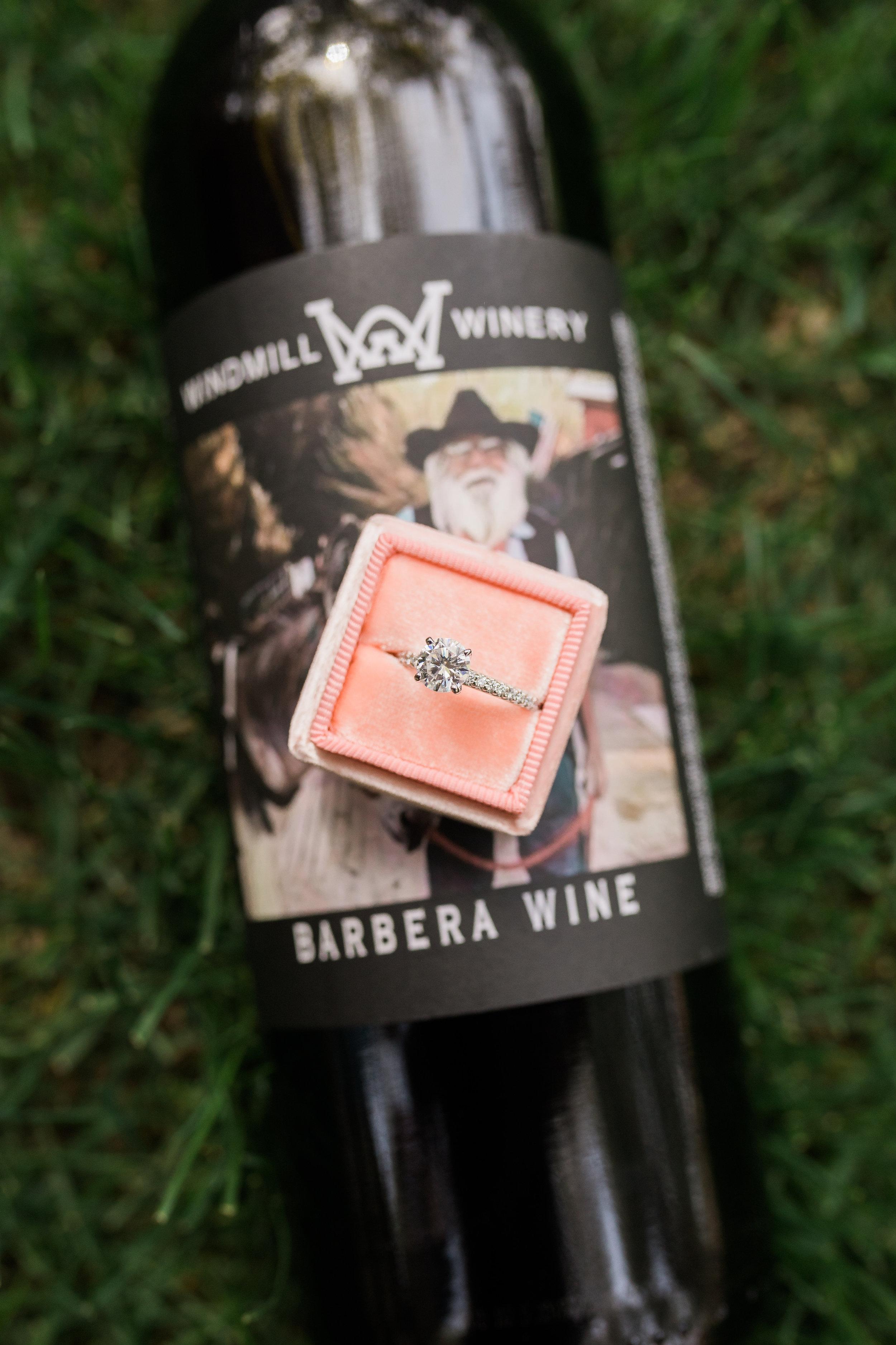 Windmill-Winery-Proposal-Tara-Nichole-Photo-Florence-Arizona-36.jpg
