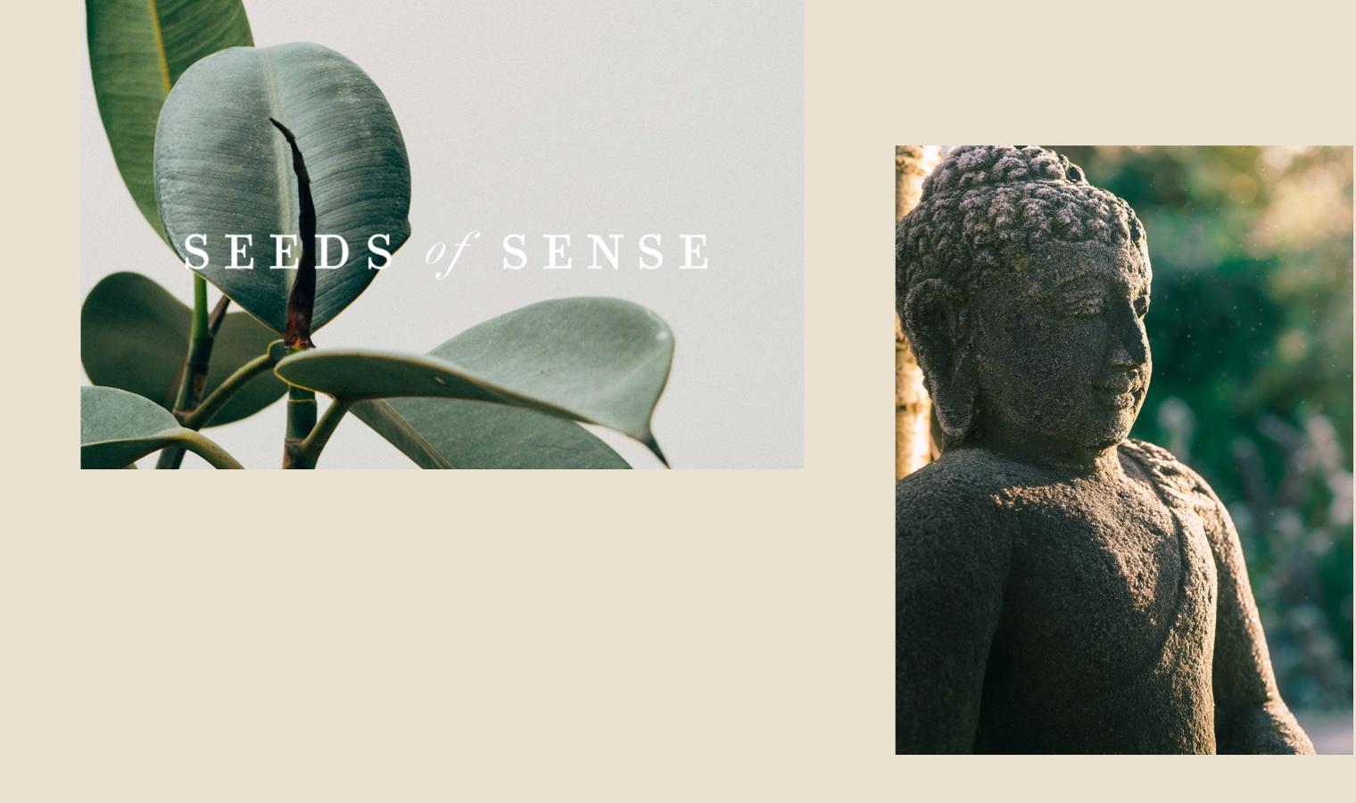 Seeds-of-Sense-Sustainable-Yoga-Wear-Branding-06.jpg