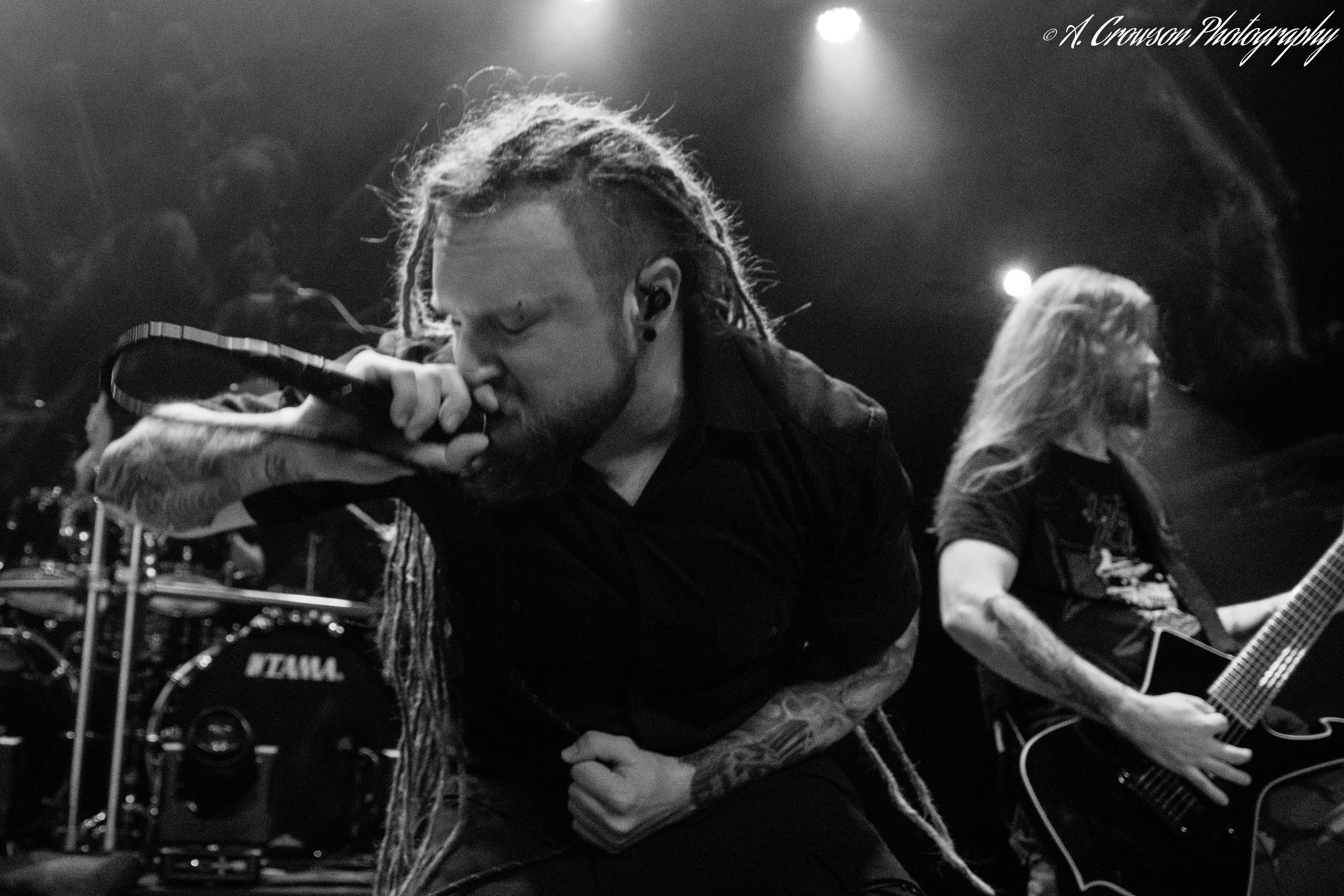 Decapitated (40).jpg