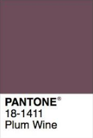 Pantone Plum Wine.png