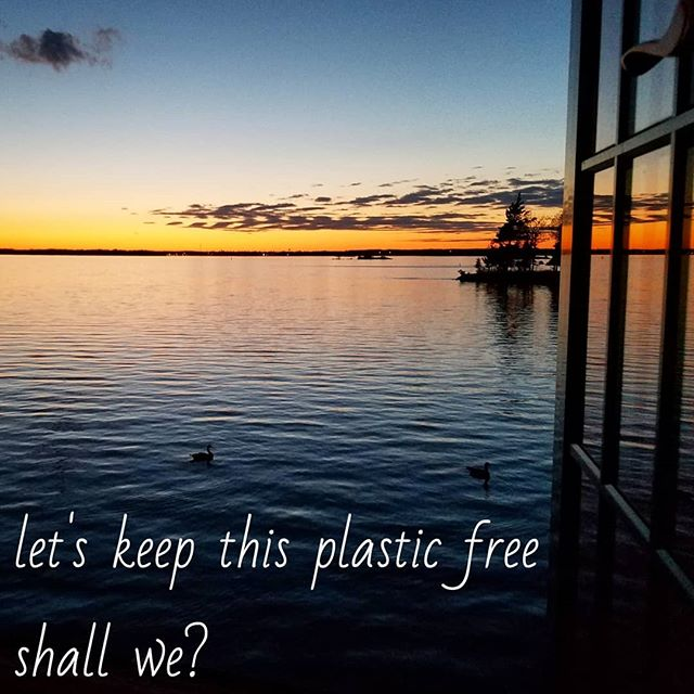 Just say no to Plastic.  #plasticfree #allinthesameboat  #greenliving #breakfreefromplastic