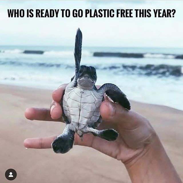 Let's do this together. 🌎 🙌 #plasticfree #greenliving