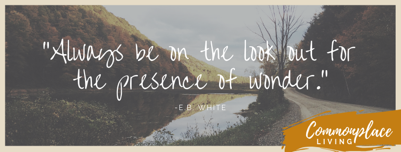eb white quote post 1.png