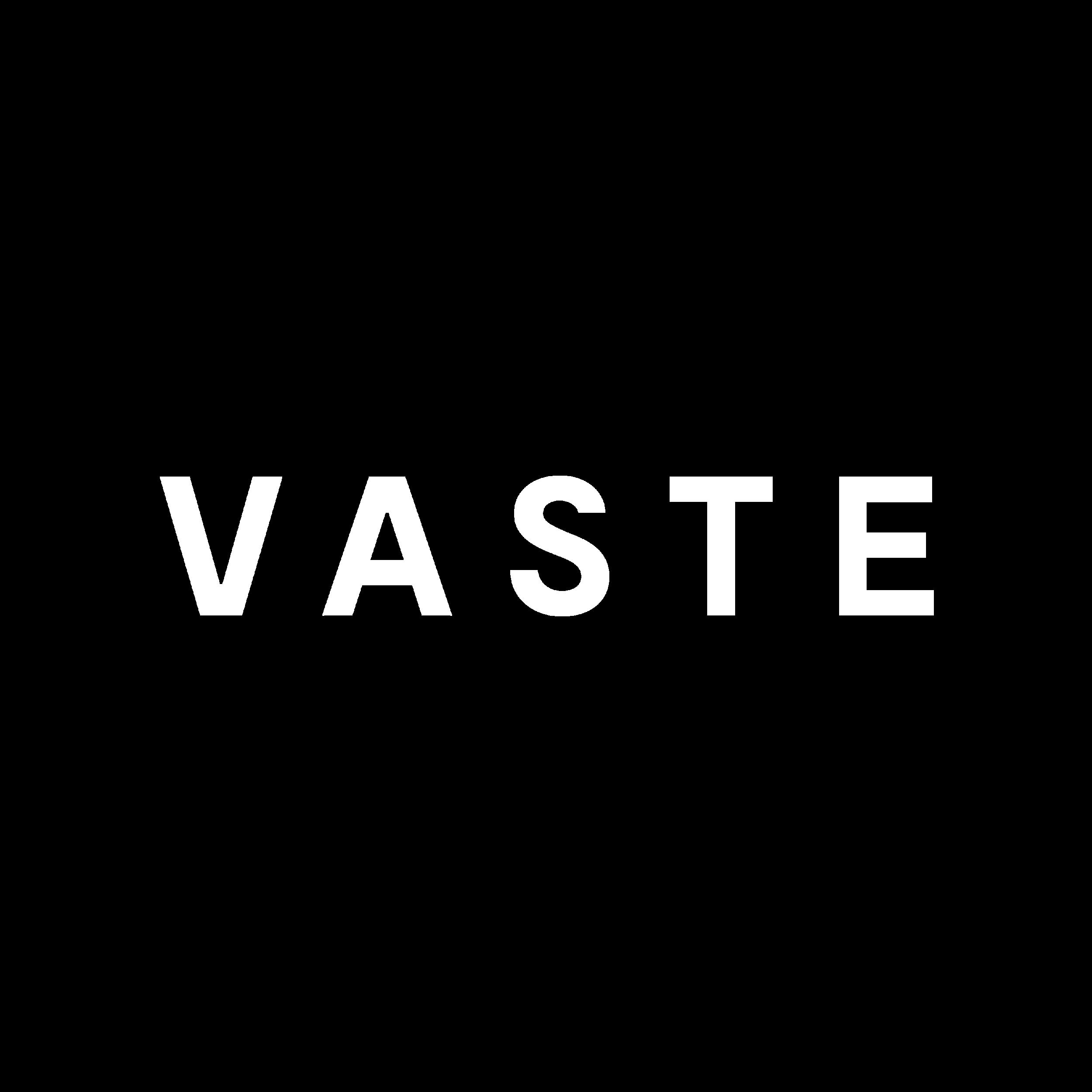 VASTE_logo blanc sans fond.png
