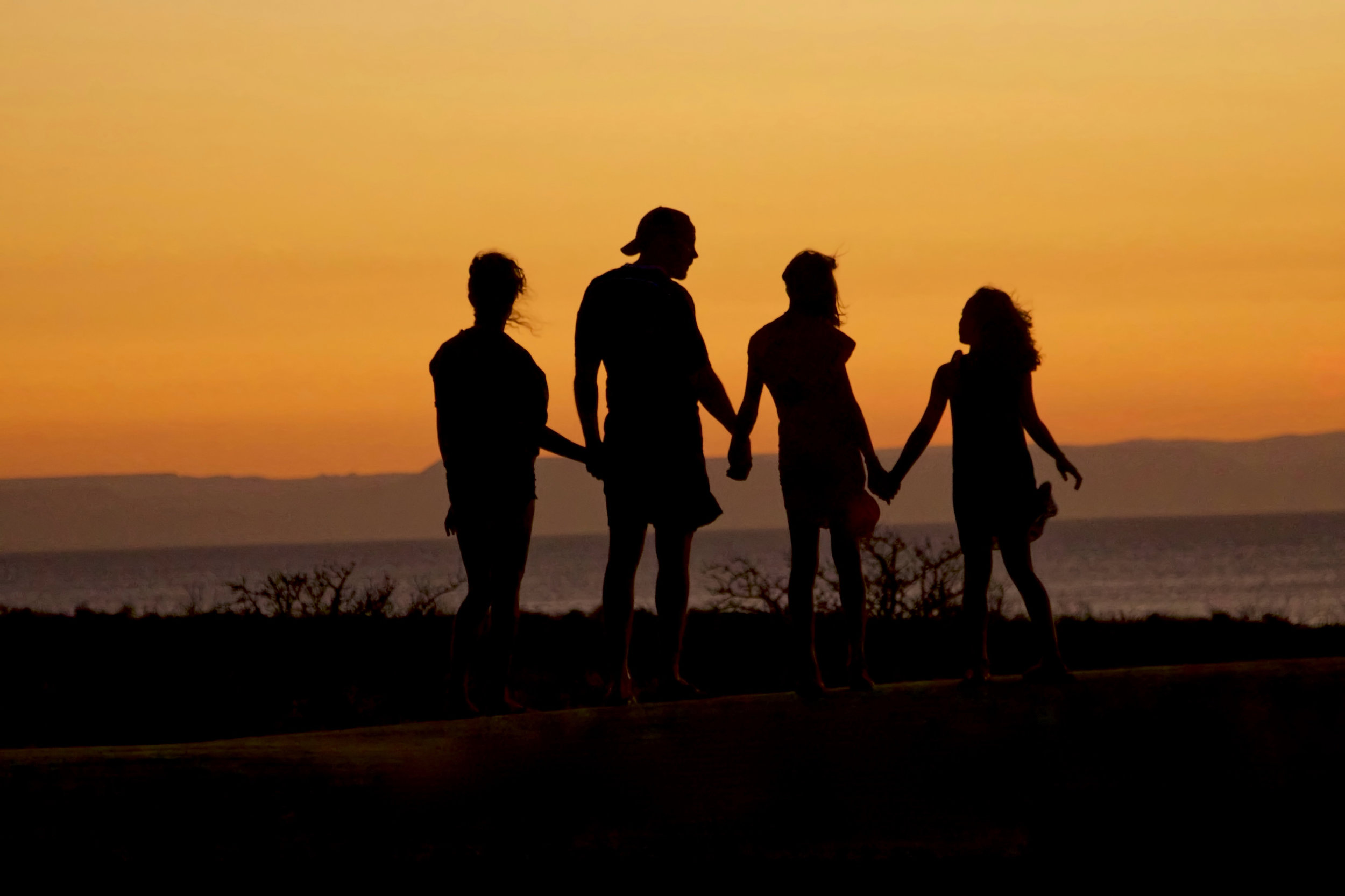 A family holding hands in front of a sunset.