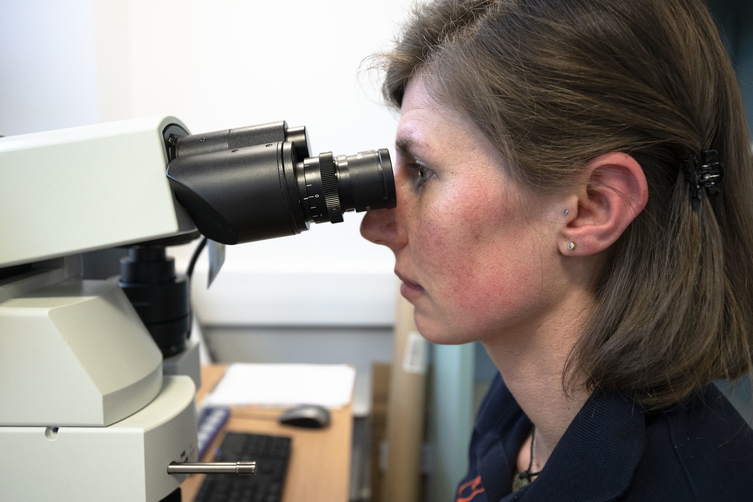 Scientist examining the slide under the microscope