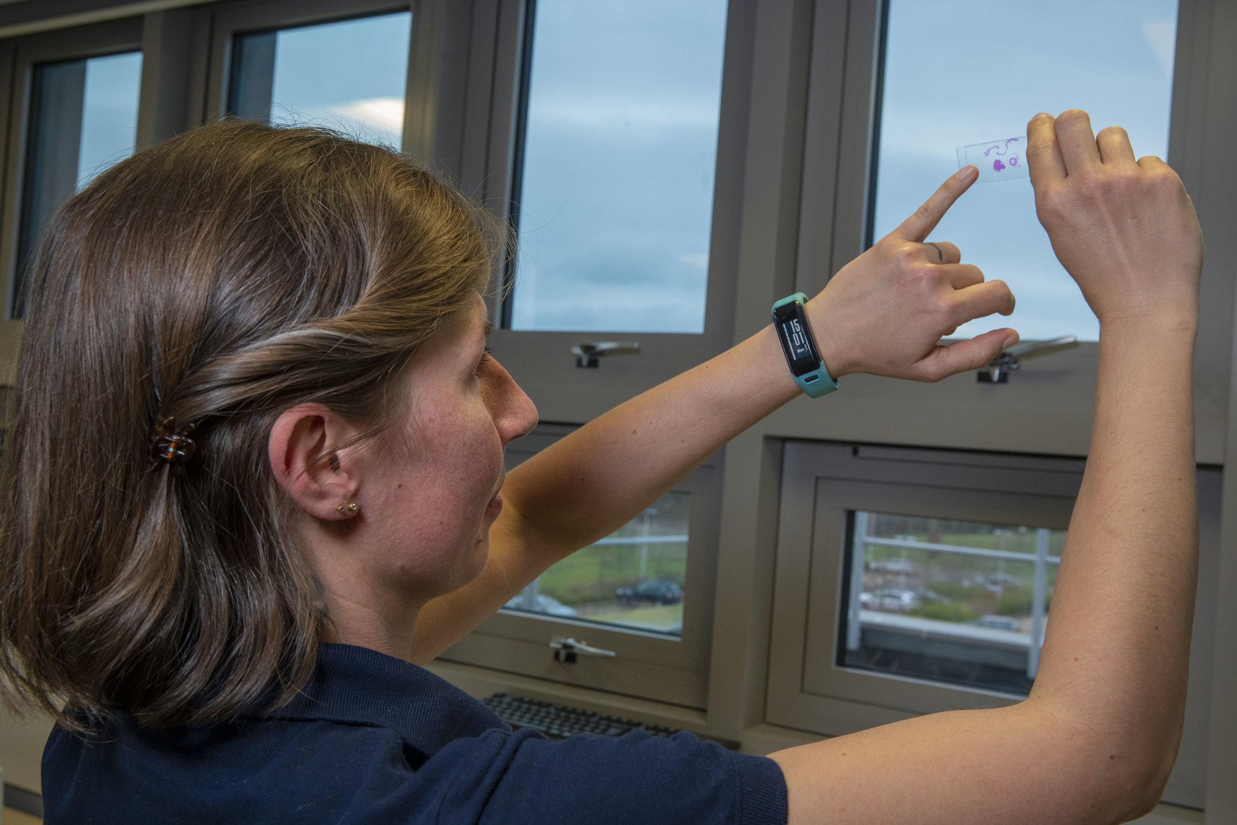 Scientist Examining Slide