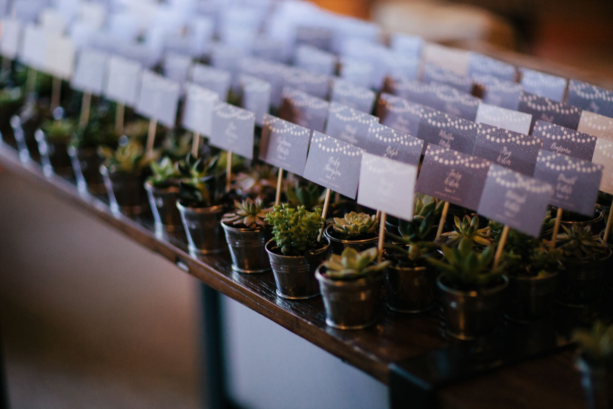 Succulent escort cards sustainable