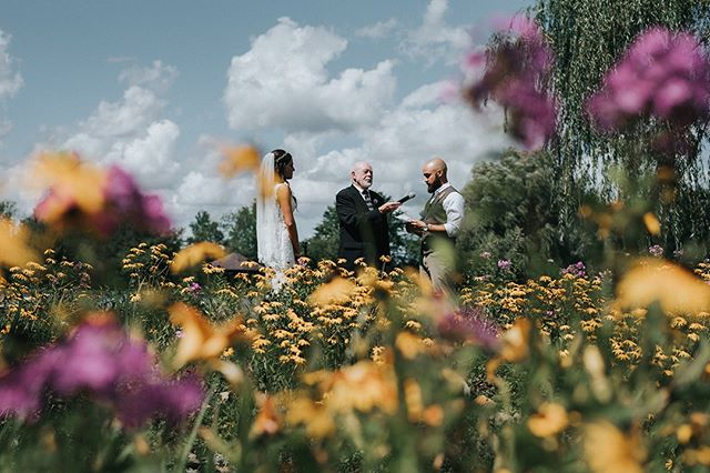 This totally unique shot of a ceremony at Meadow Ridge Farm captures the magic of love and springtime perfectly! Would you get married in this dreamy field of flowers? 💐⠀ .⠀ .⠀ .⠀ Check out more pictures from this wedding on The Overwhelmed Bride (link in bio!) ⠀ .⠀ Photography: @nickplusdanee⠀ .⠀ .⠀ .⠀ #weddingflowers #weddingflorist #weddingflorals #bridalflowers #bridalbouquet #bridebouquet #weddingfloralinspo ⠀ #ClevelandWedding #Cleveland  #ClevlandWeddingPlanner #AkronWedding #AkronWeddingPlanner #OhioWedding #OhioBride #OhioWeddingPlanner #weddingplanner #bridetobe #weddinginspo #weddinginspiration #beinspired #fallinlove #ecofriendlywedding #weddingideas #earthfriendly #sustainability #ecofriendlybrides #weddingdesign  #theknot #bestofweddings2019  #oakandhoneyeventplanningco