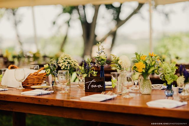 There are endless possibilities both aesthetically and conceptually when designing a cozy backyard wedding. For Elizabeth + David's big day, they wanted a very clean, elegant, and modern design that captured their fun and unique style. We think they nailed it, what do you think?  . . . . Photography: @addisonjonesphotography Floral: @fairrarityflowers Rentals: Borrow Vintage + Eclectic Rentals . . . . #weddingtablescape #weddingtable #reception #weddingtabledecor #receptiondesign #receptioninspo #weddingplacesetting #Akron #Cleveland #AkronOhio #HeyAkron #ClevelandOhio #CleWedding #ClevelandWedding #AkronWedding #AkronWeddingPlanner #ClevelandWeddingPlanner #OhioWeddingPlanner #OhioWedding #bridetobe #weddinginsta #wedspiration #weddinglove #greenweddingshoes #bestofweddings2019 #vlistmember #oakandhoneyevents #oakandhoneyeventplanningco