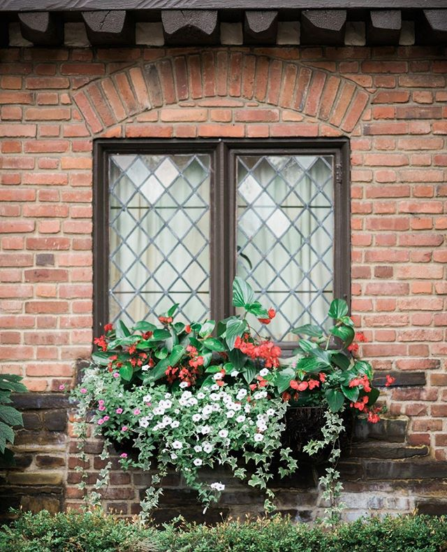 How dreamy is this picturesque window at @theclubathillbrook? This venue is one of our favorites for a classic garden wedding aesthetic! ⁠ .⁠ .⁠ .⁠ Browse pictures from one of our favorite weddings at this venue on our blog! (link in bio!)⁠ .⁠ .⁠ .⁠ .⁠ #ClevelandWedding #Cleveland #CleWedding #ClevlandWeddingPlanner #AkronWedding #AkronWeddingPlanner #AkronBride #OhioWedding #OhioBride #OhioWeddingPlanner #weddingplanner #bridetobe #weddinginspo #weddinginspiration #beinspired #fallinlove #ecofriendlywedding #weddingideas #earthfriendly #sustainability #ecofriendlybrides #weddingdesign #ido #theknot #vlistmember #bestofweddings2019 #oakandhoneyevents #oakandhoneyeventplanningco ⁠