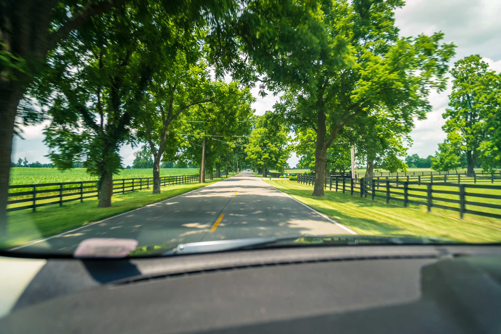 Lexington2018BlogExport-02248.jpg