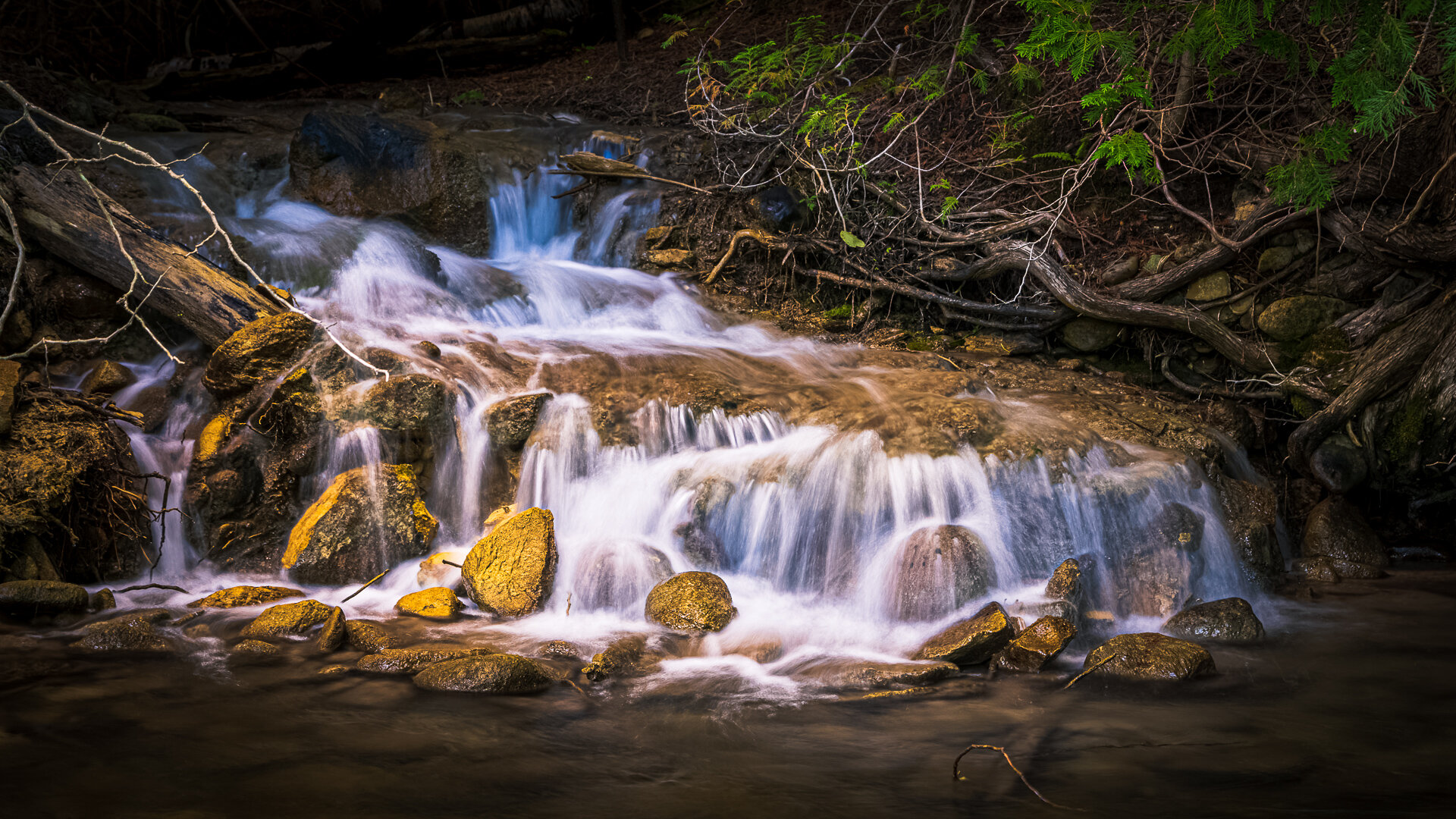 Nottawassaga Creek Waterfall