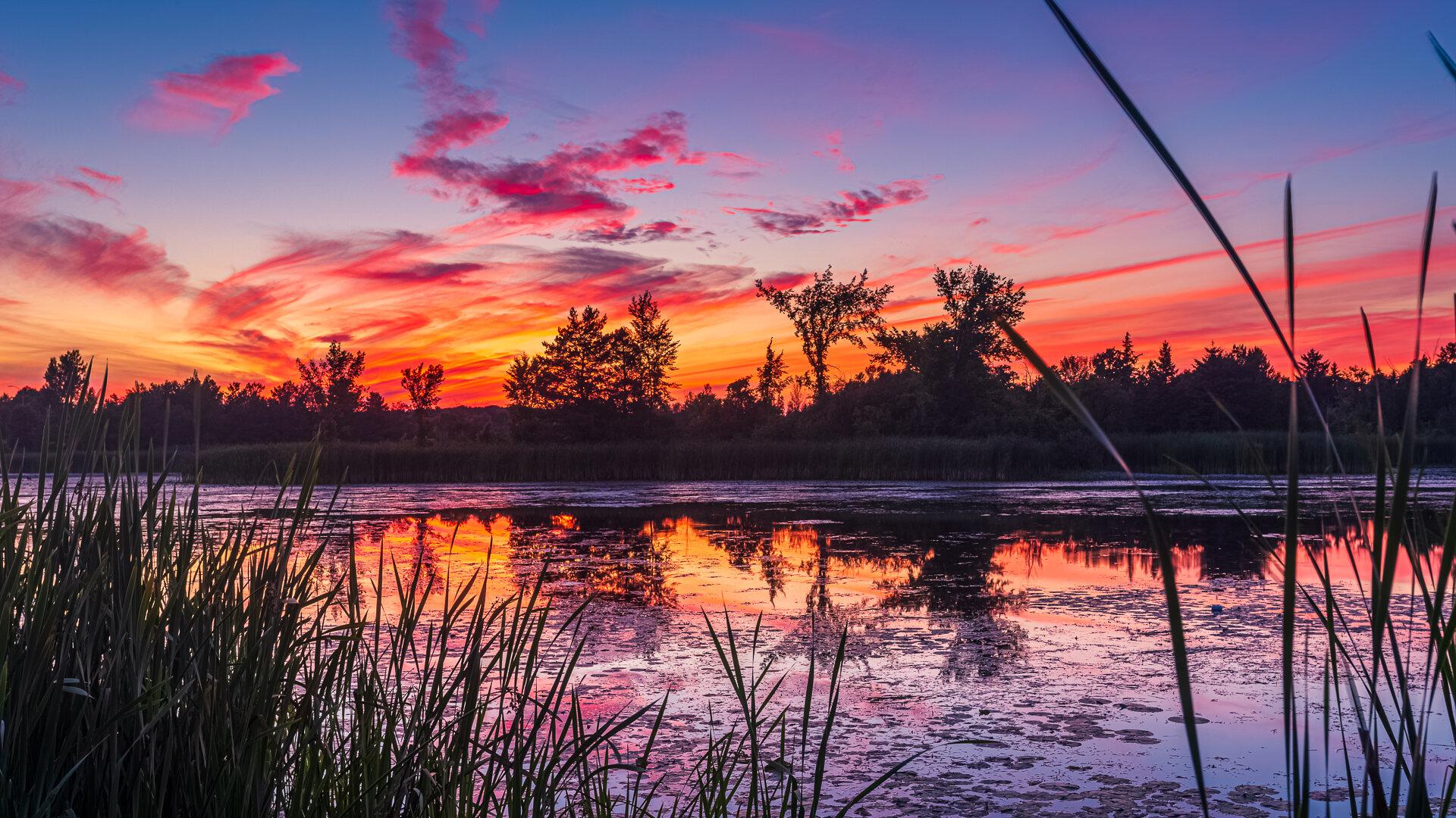 Fiery Orangeville Marsh Sunset