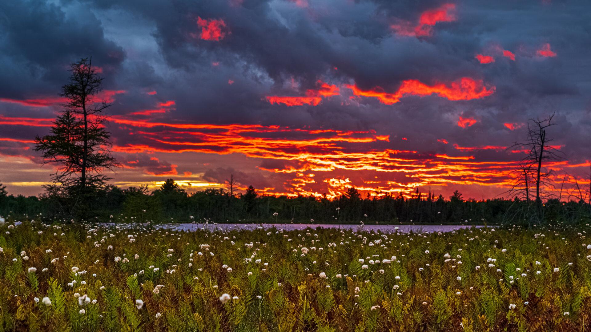 Torrance Barrens Intense Sunset