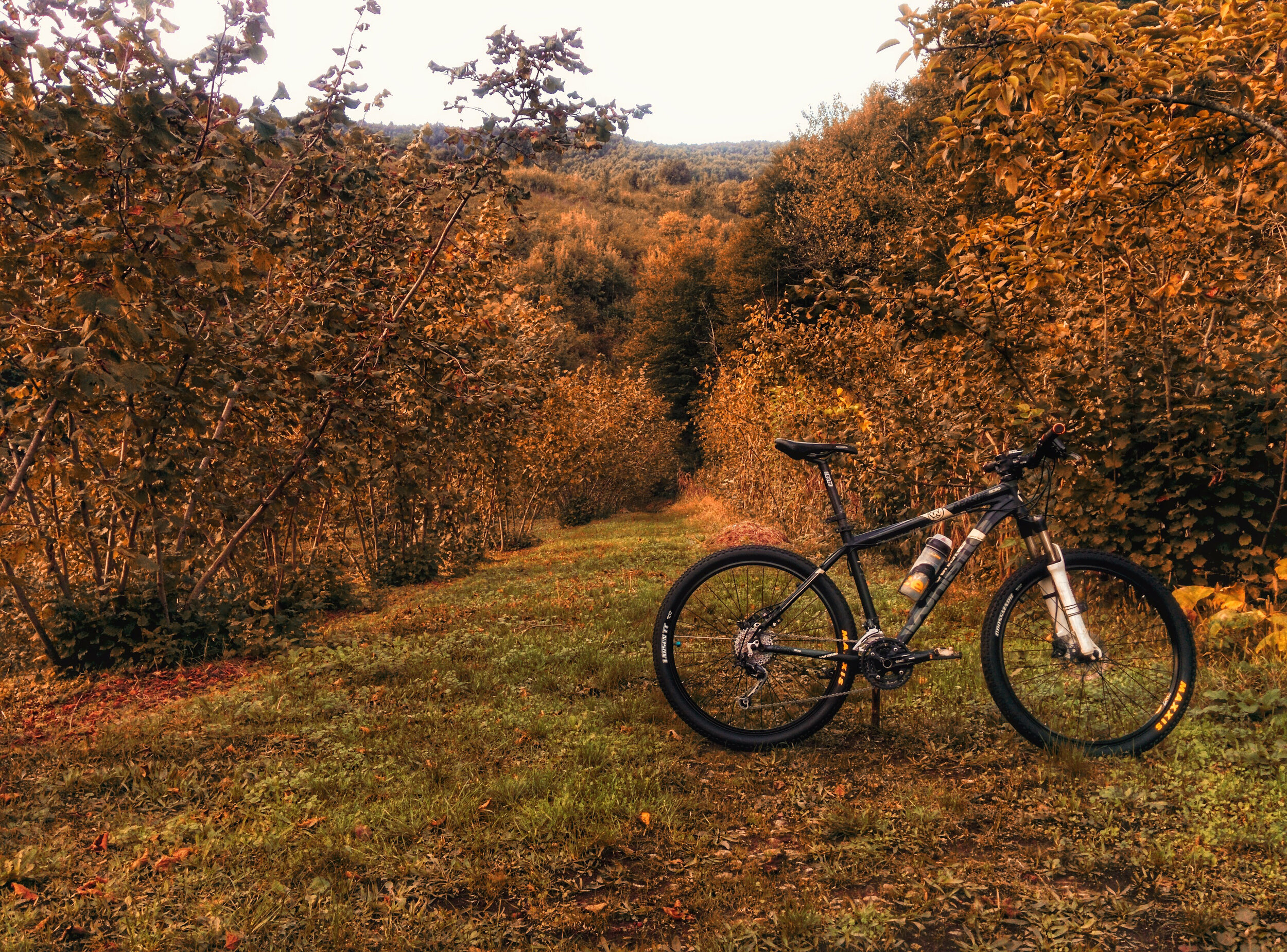 Fall Riding - What to know for the 2019 Hunting Season