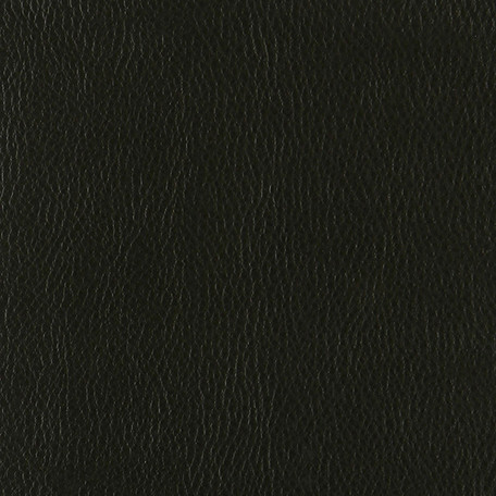 Eco Leather INCA Black 11