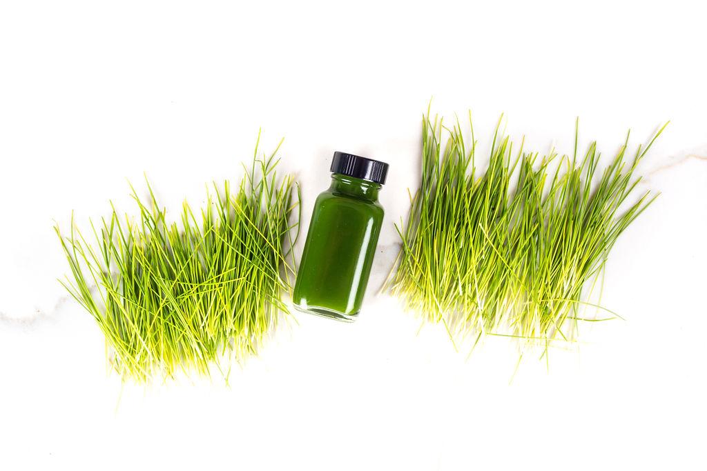 Wheatgrass -